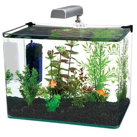 Penn Plax Radius 5 Gallon Glass Aquarium Kit