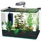 Penn Plax Radius 5 Gallon Glass Aquarium Kit