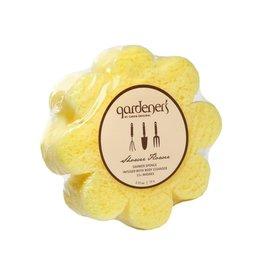 Caren Products Caren - Sponges