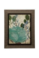 StyleCraft Home Collection - Succulents II - Framed Print Under Glass (WM12383)