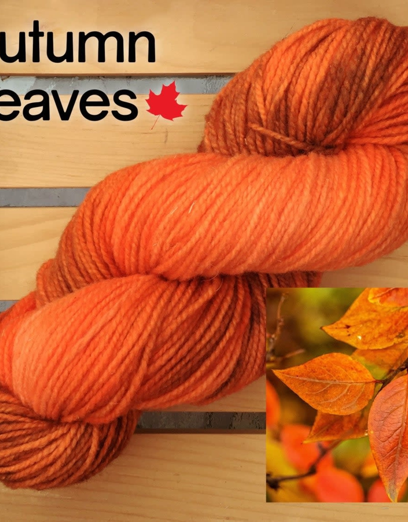 Gravity Fibre Amherst Island Worsted