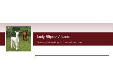 Lady Slipper Alpacas