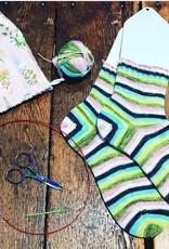 Knit Socks with Lisa Taylor