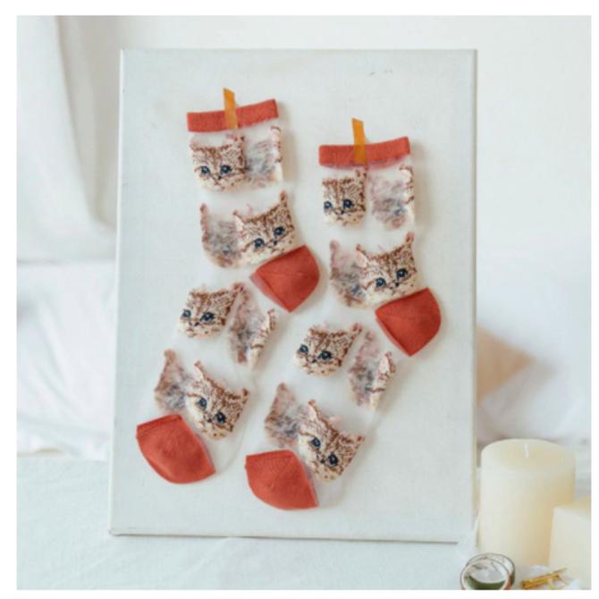 Rainbow Unicorn Birthday Mesh Cat Socks