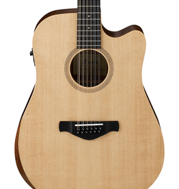 Ibanez 12 String AW152C Open Pour