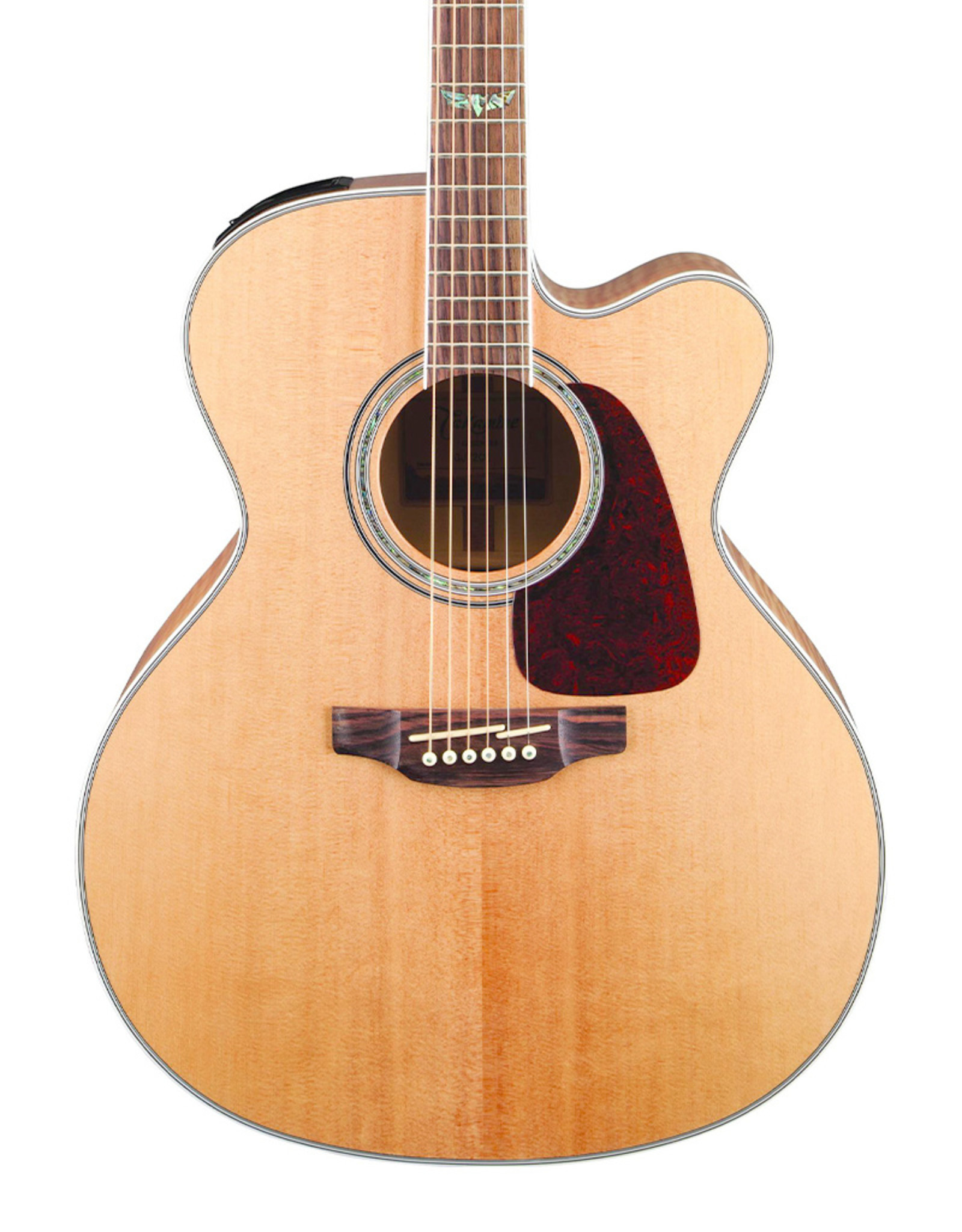 Takamine G Series 6 String