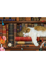 "Eurographics ""The Cat Nap""  500 Piece Puzzle"