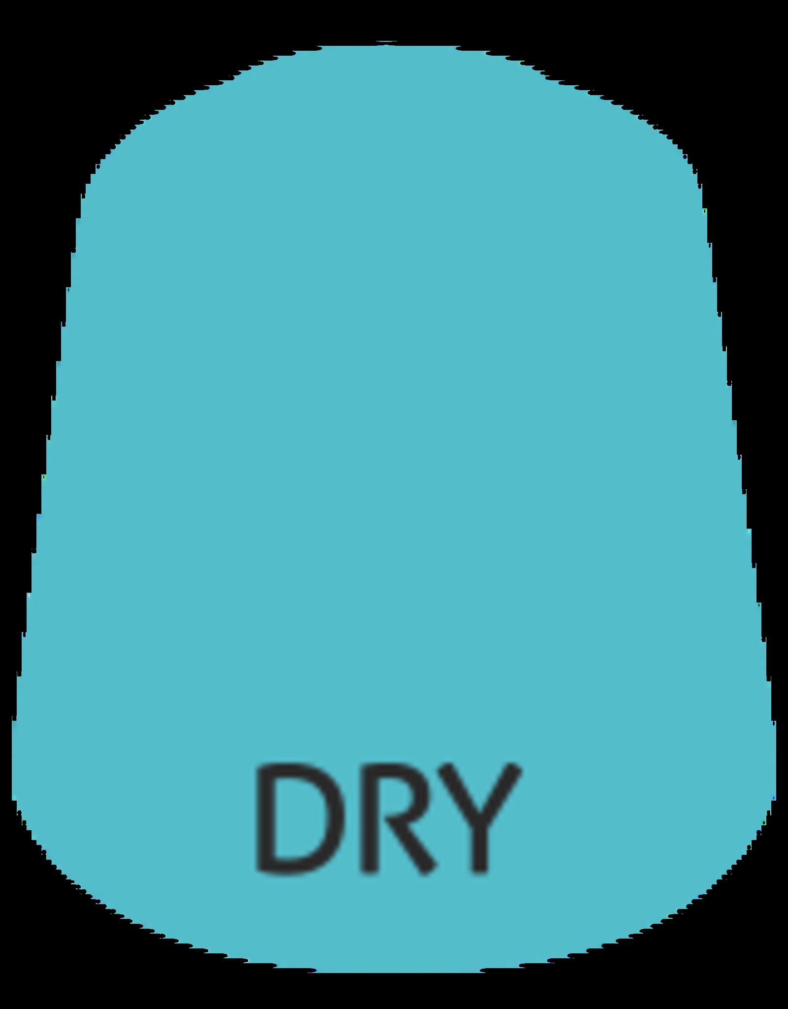 Citadel Citadel Paints Dry Paint Skink Blue