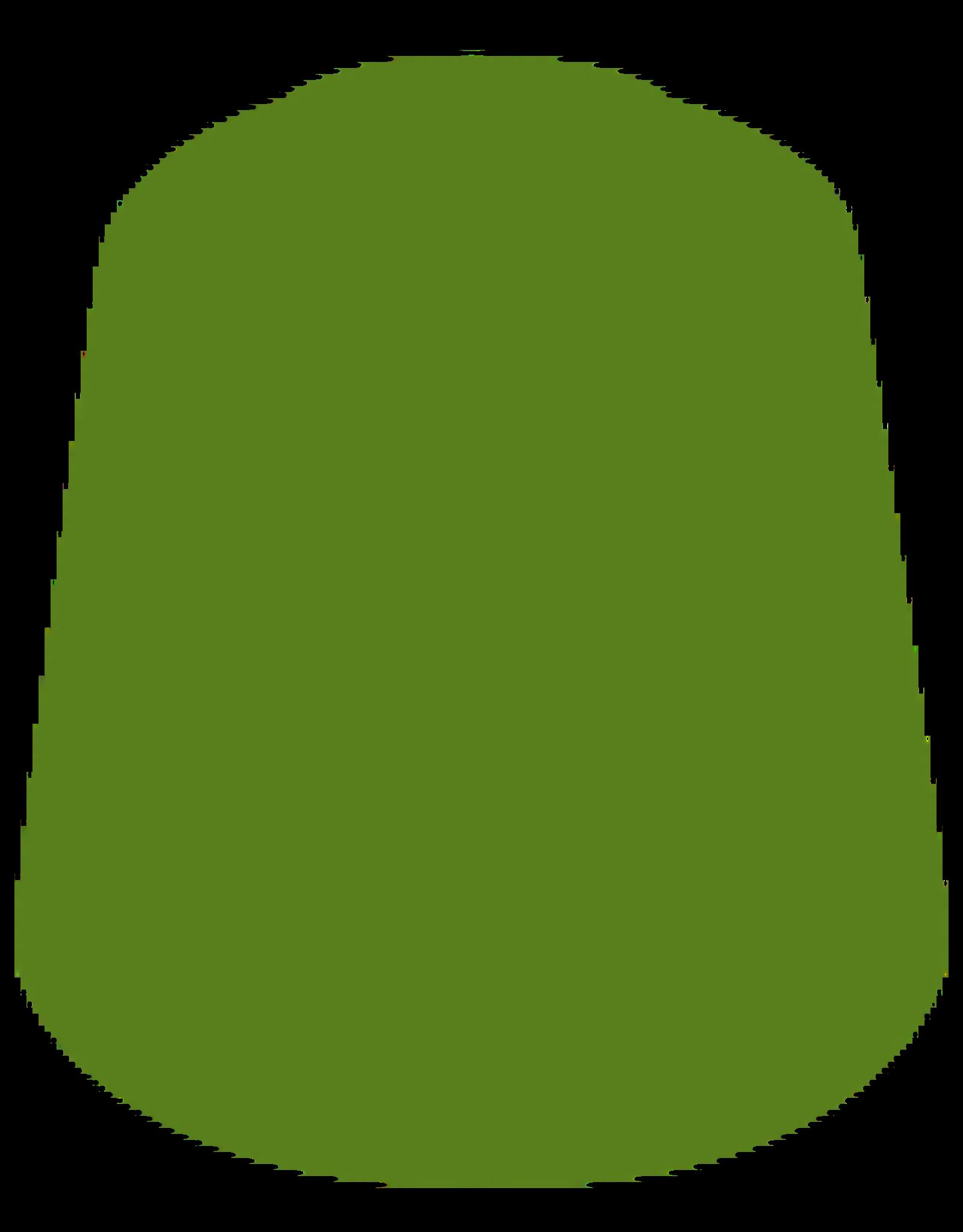Citadel Citadel Paints Layer Paint Straken Green