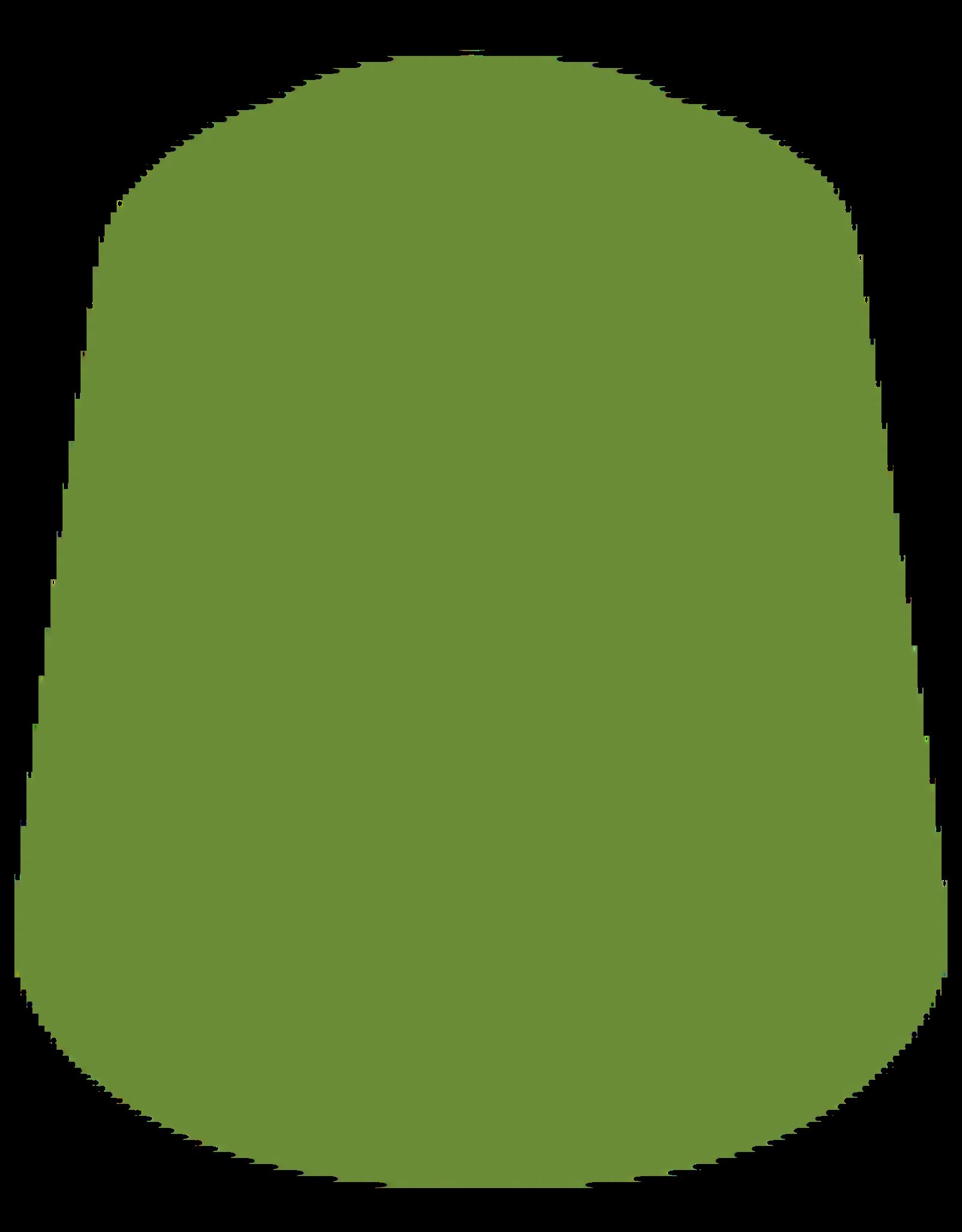 Citadel Citadel Paints Layer Paint Elysian Green