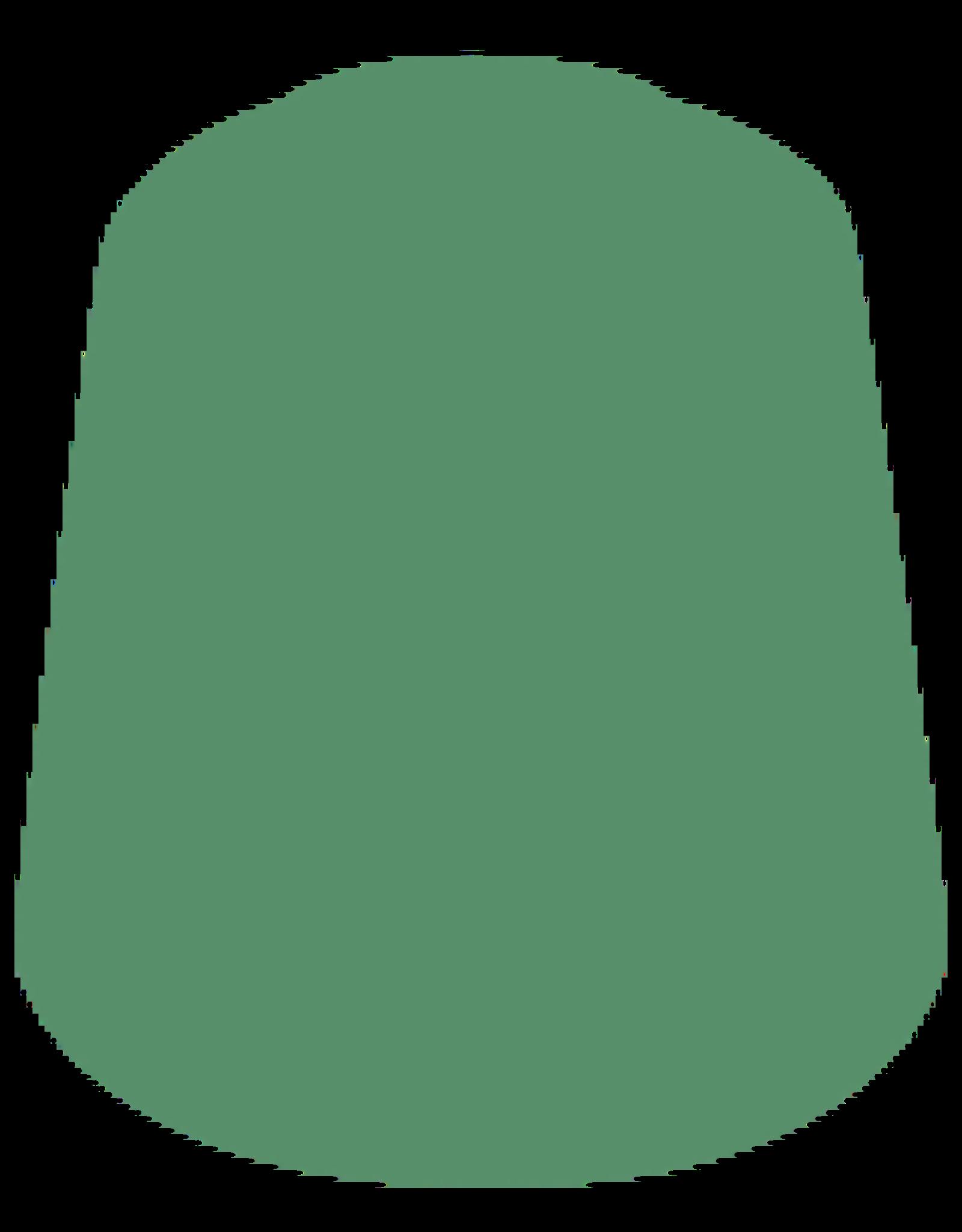 Citadel Citadel Paints Layer Paint Skarsnik Green