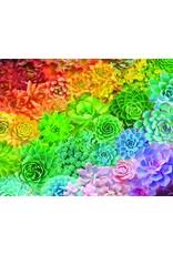 """White Mountain Puzzle """"Succulent Rainbow"""" 1000 Piece Puzzle"""