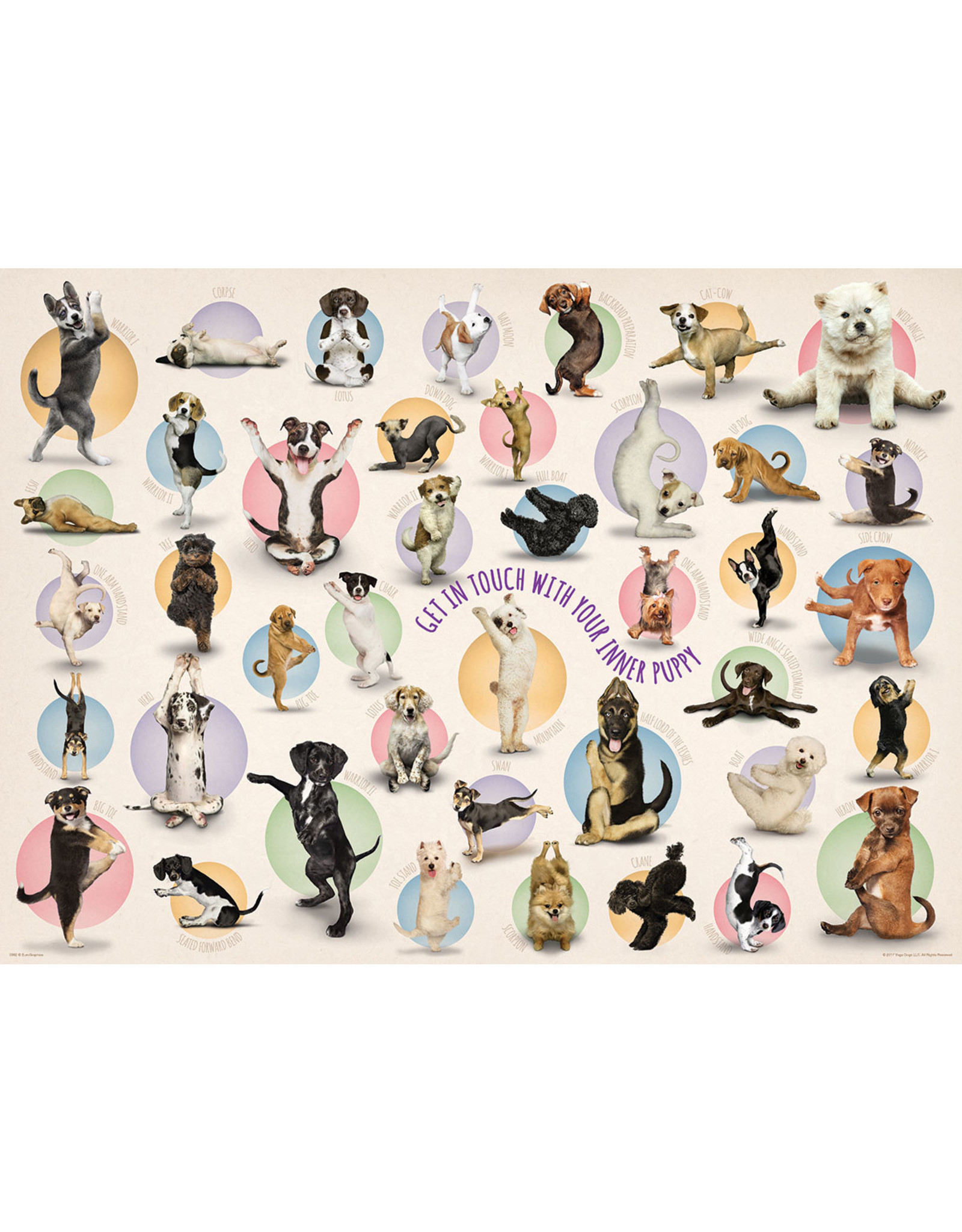 "Eurographics ""Yoga Puppies"" 300 Piece Puzzle"