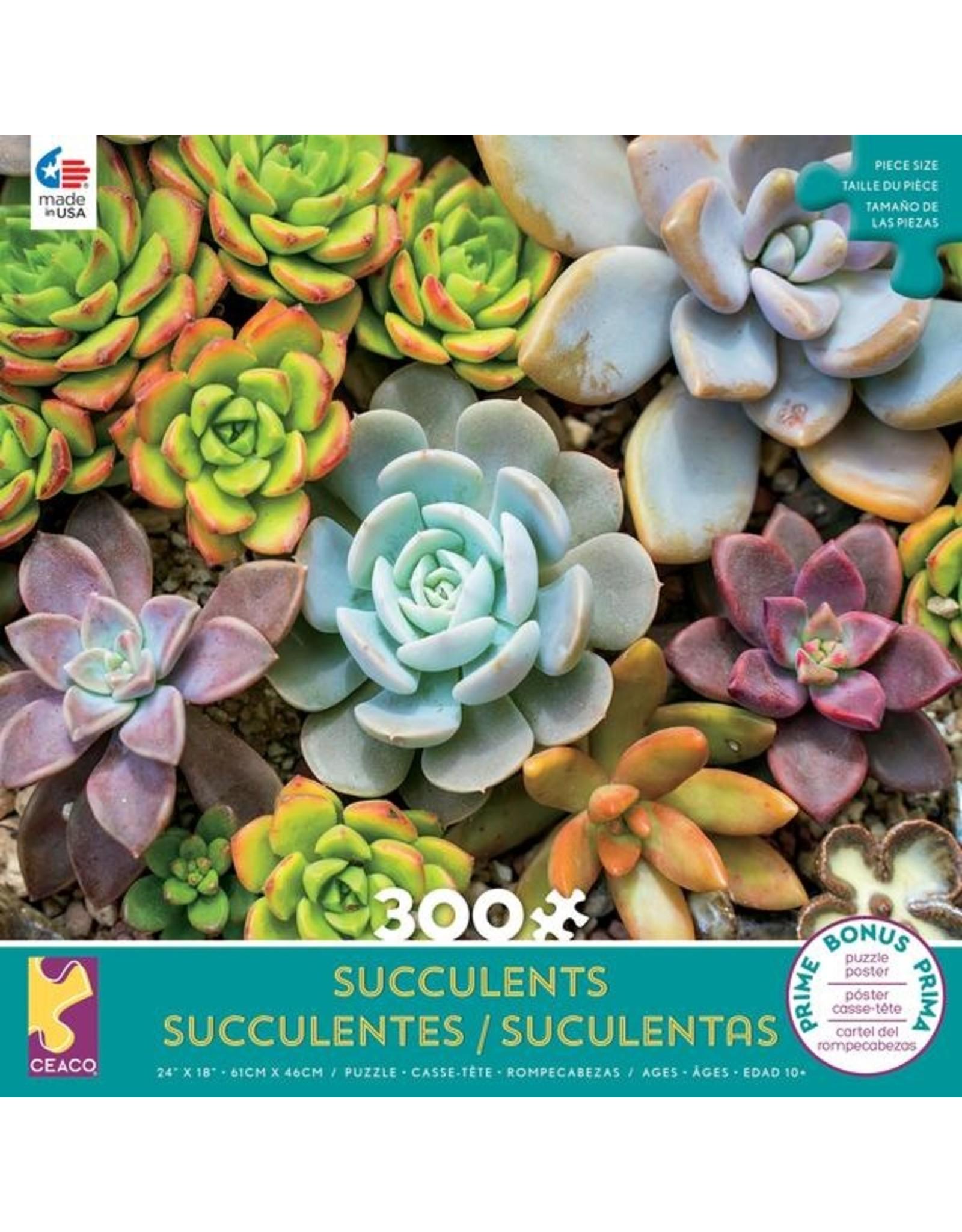"""Ceaco """"Succulents: Rosette"""" 300 Piece Puzzle"""