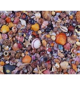 "Piatnik ""Sea Shells"" 1000 Piece Puzzle"
