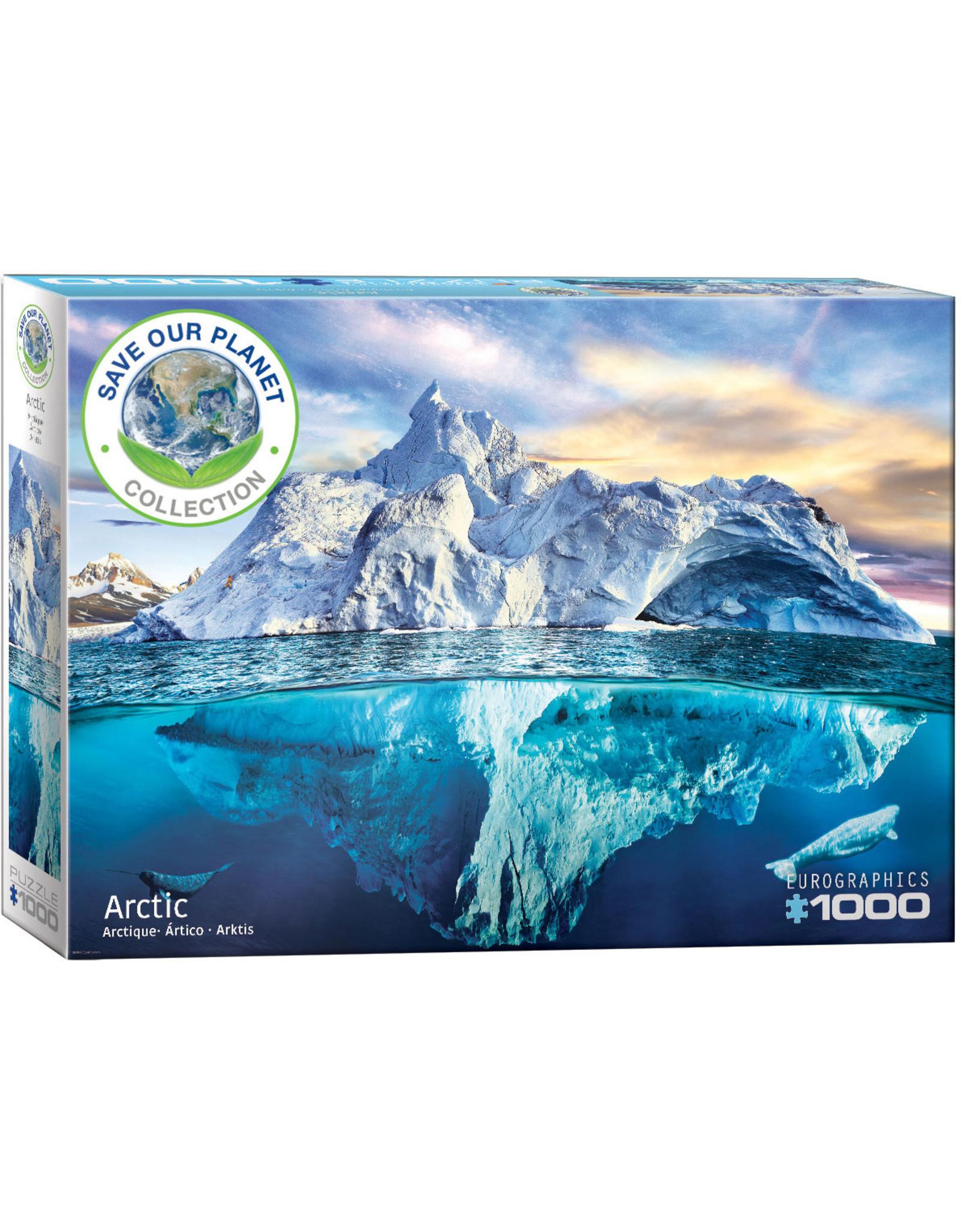 """Eurographics """"Arctic"""" 1000 Piece Puzzle"""