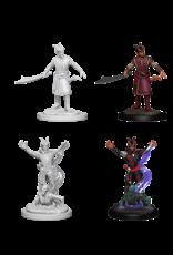 Wizkids Unpainted Miniatures: Tiefling Characters
