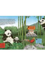 Quarto Group 50 Reasons to Love Animals