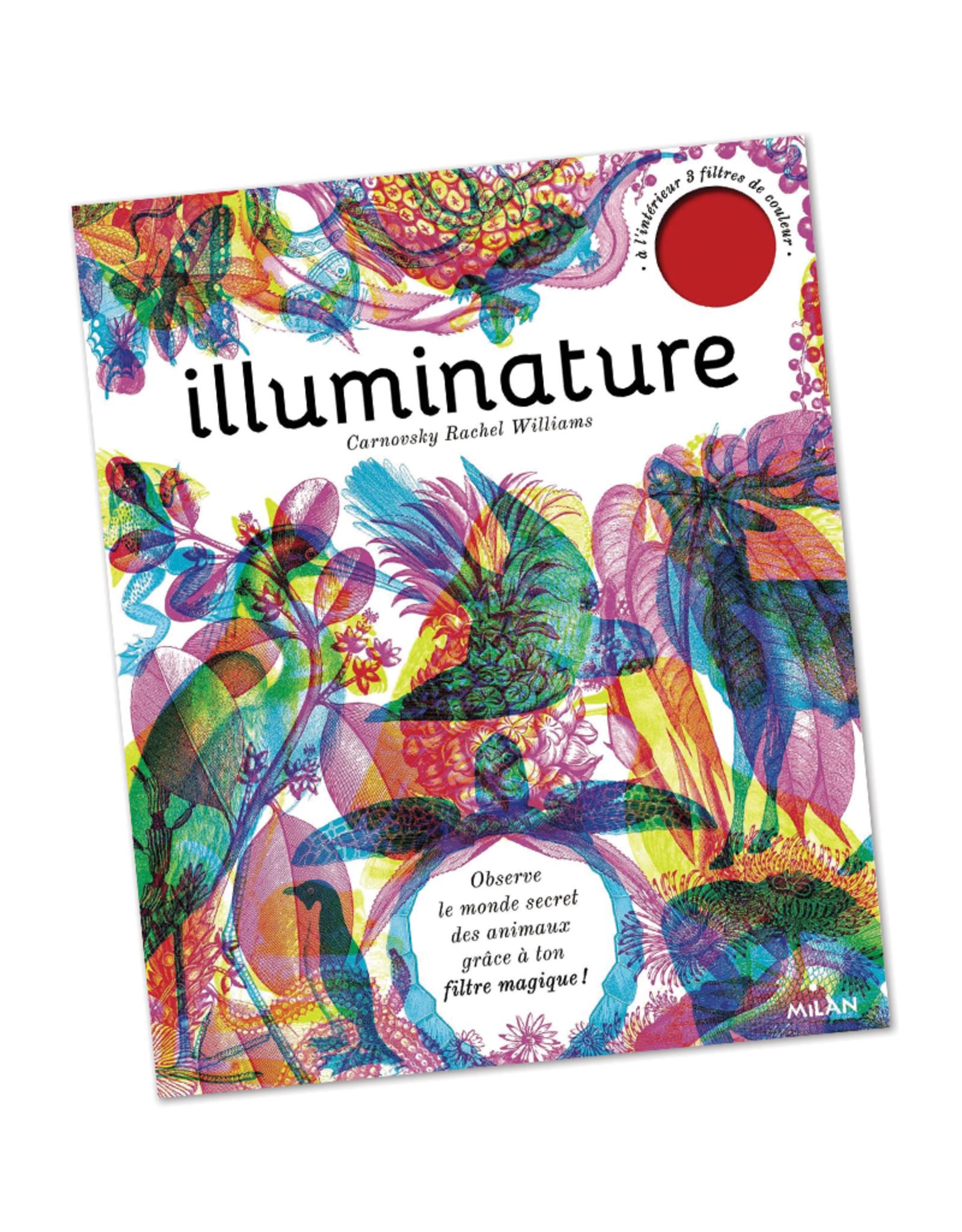 Quarto Group Illuminature