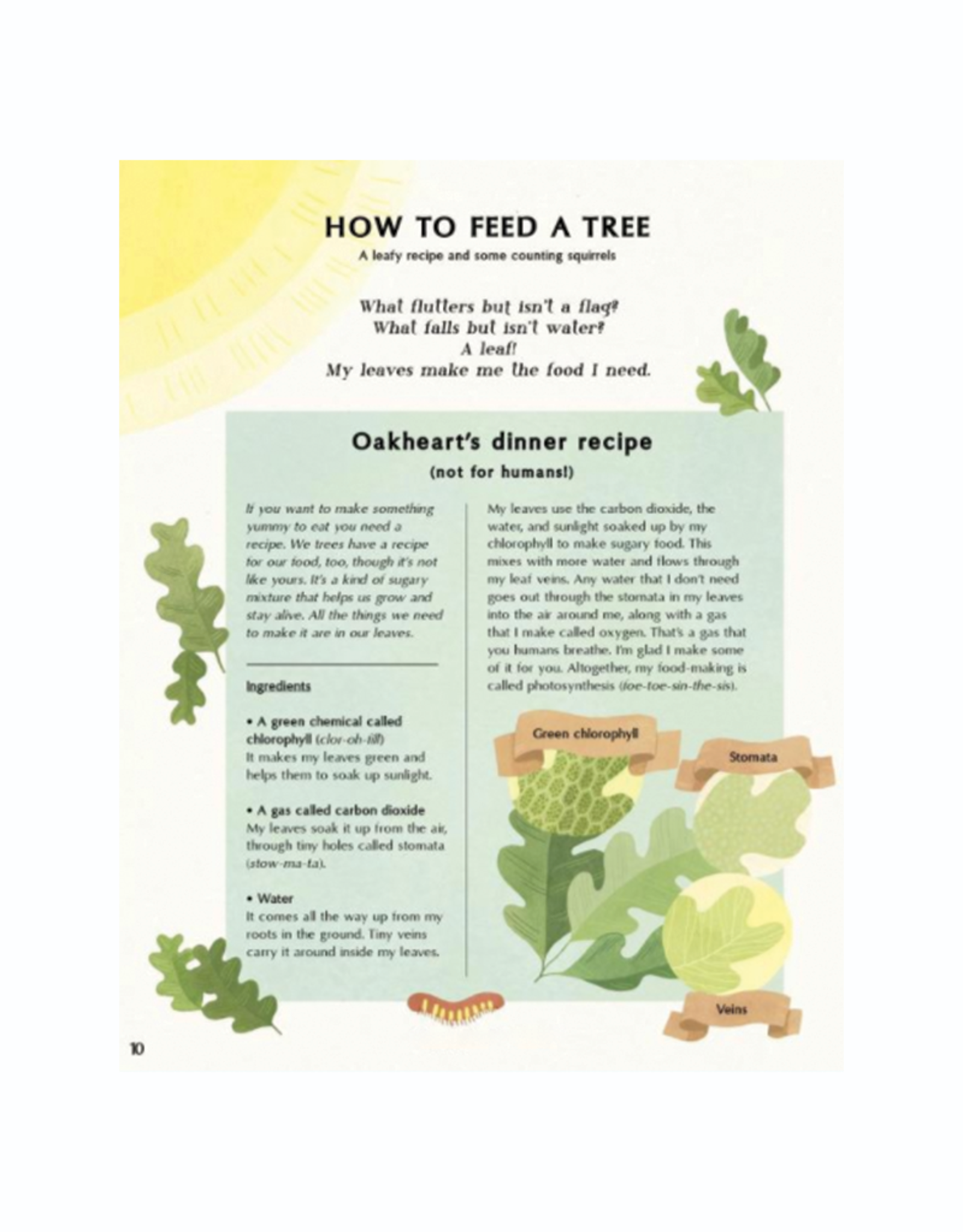 Quarto Group The Secret Life of Trees