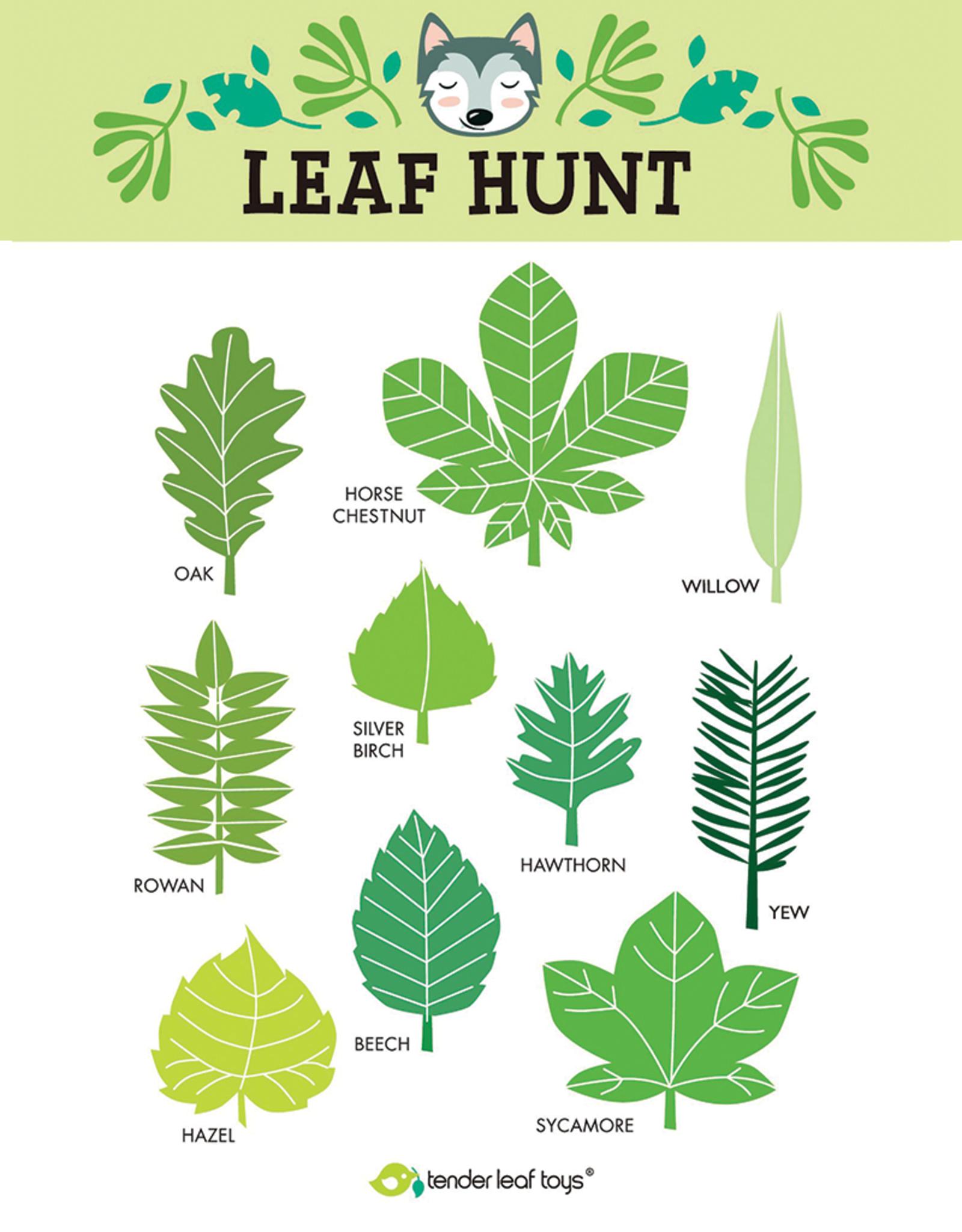 Tender Leaf Forest Trail Kit