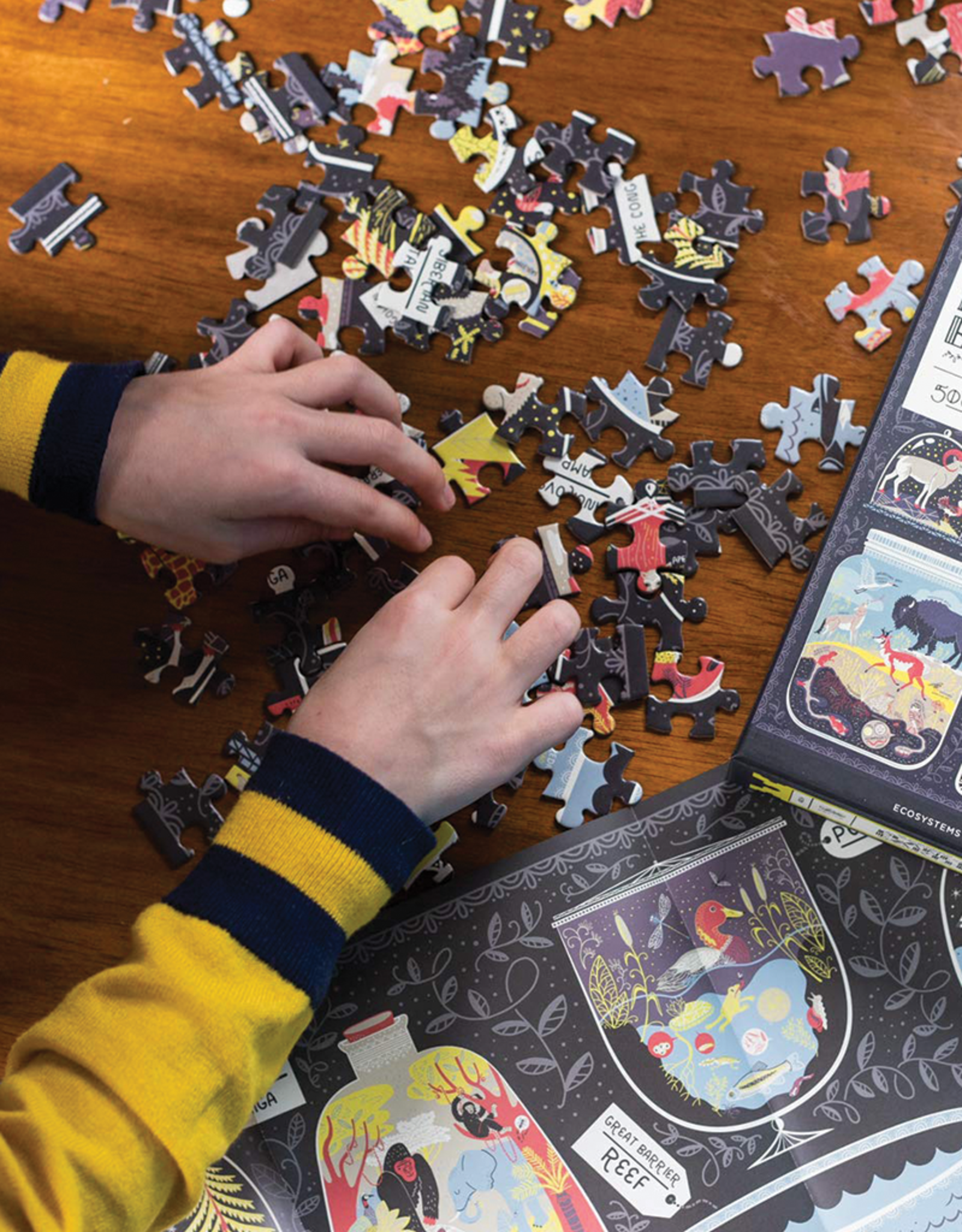 The Wondrous Workings of Planet Earth 500-pc Puzzle