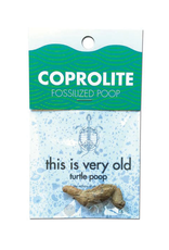 Copernicus Toys Coprolite Fossil