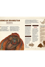 A Curious Collection of Peculiar Creatures:  An Illustrated Encyclopedia