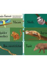 Hidden World Animals: A Life-the-flap Book