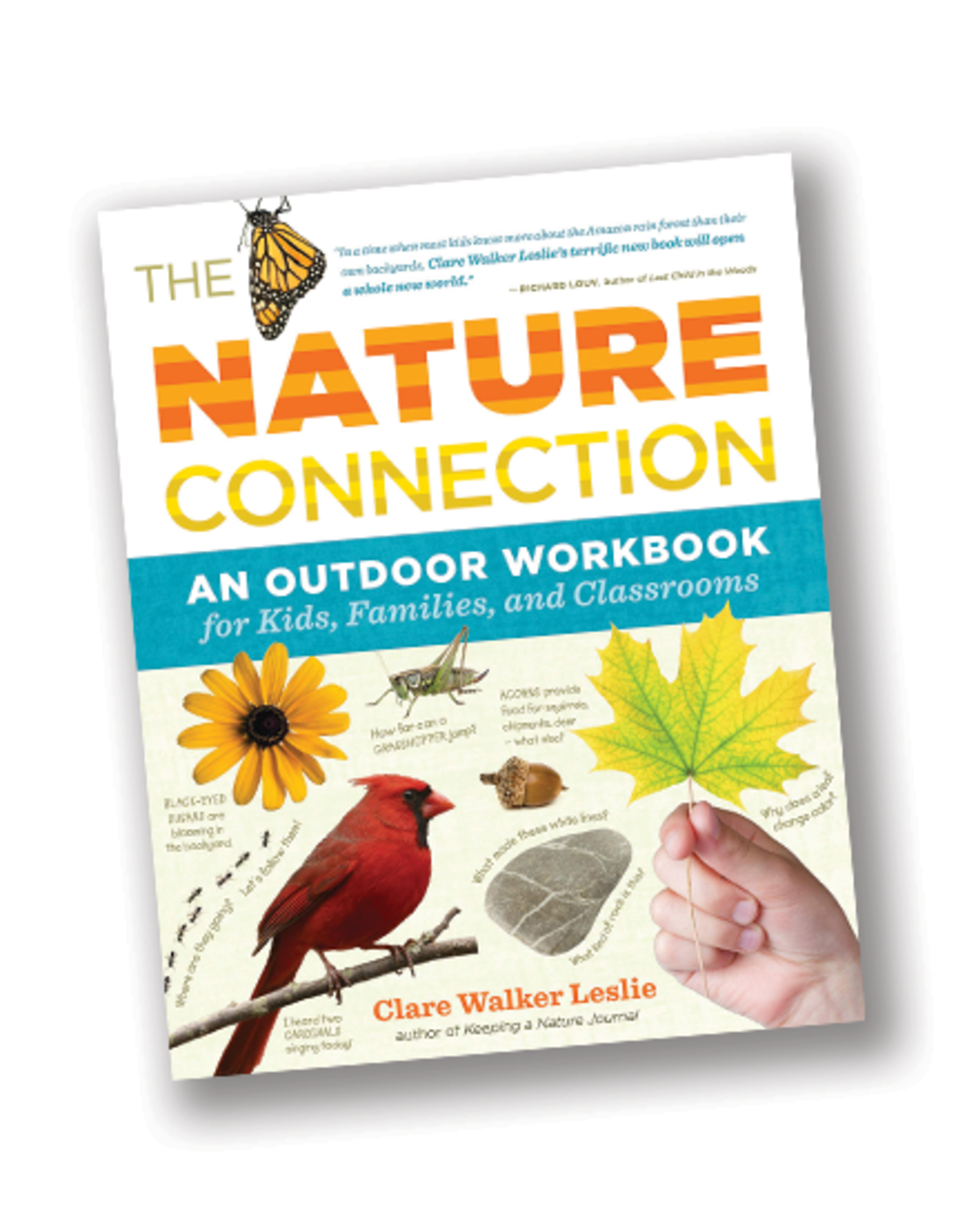 Workman Publishing Nature Connection:  Outdoor Workbook For Kids