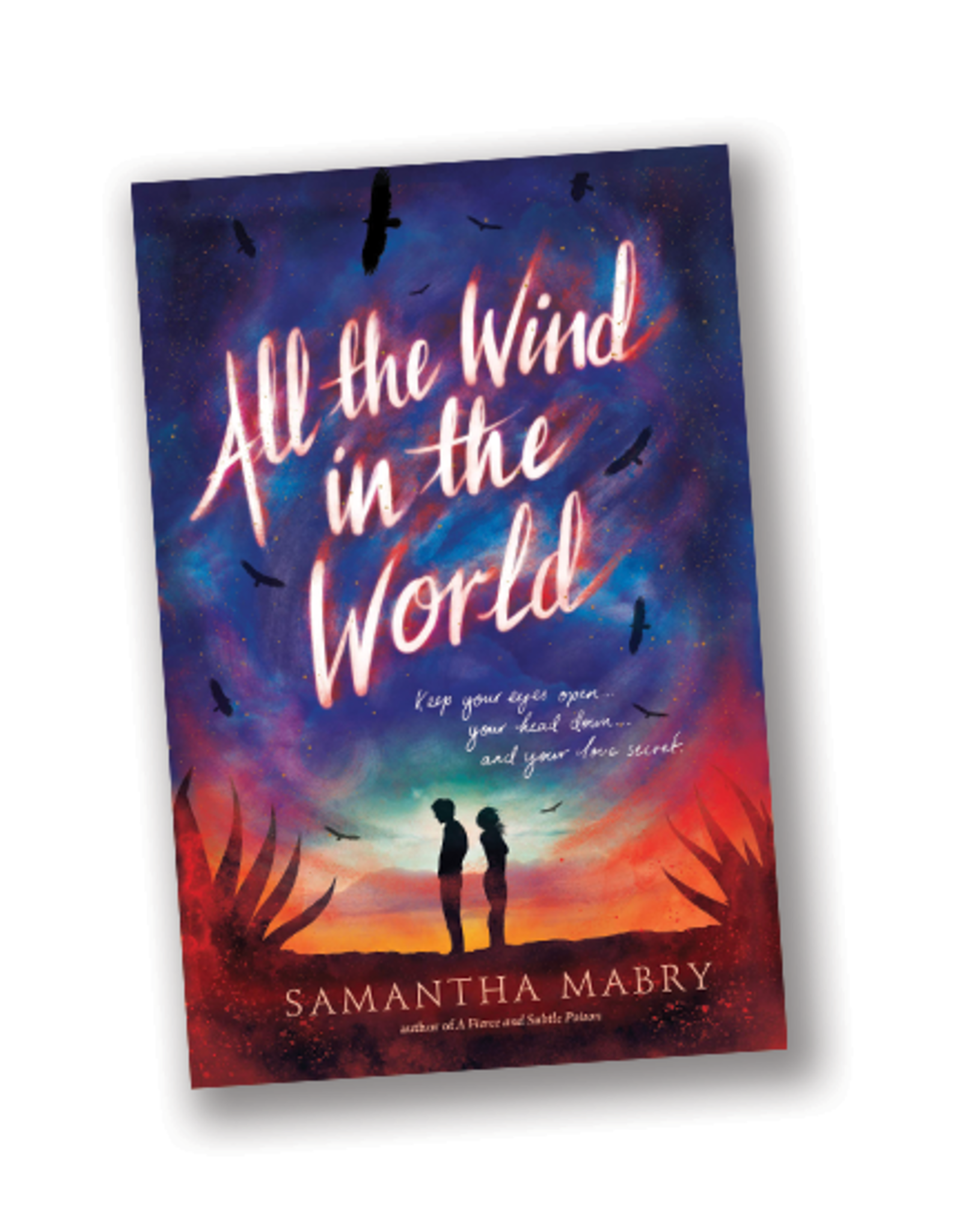 Workman Publishing All the Wind in the World
