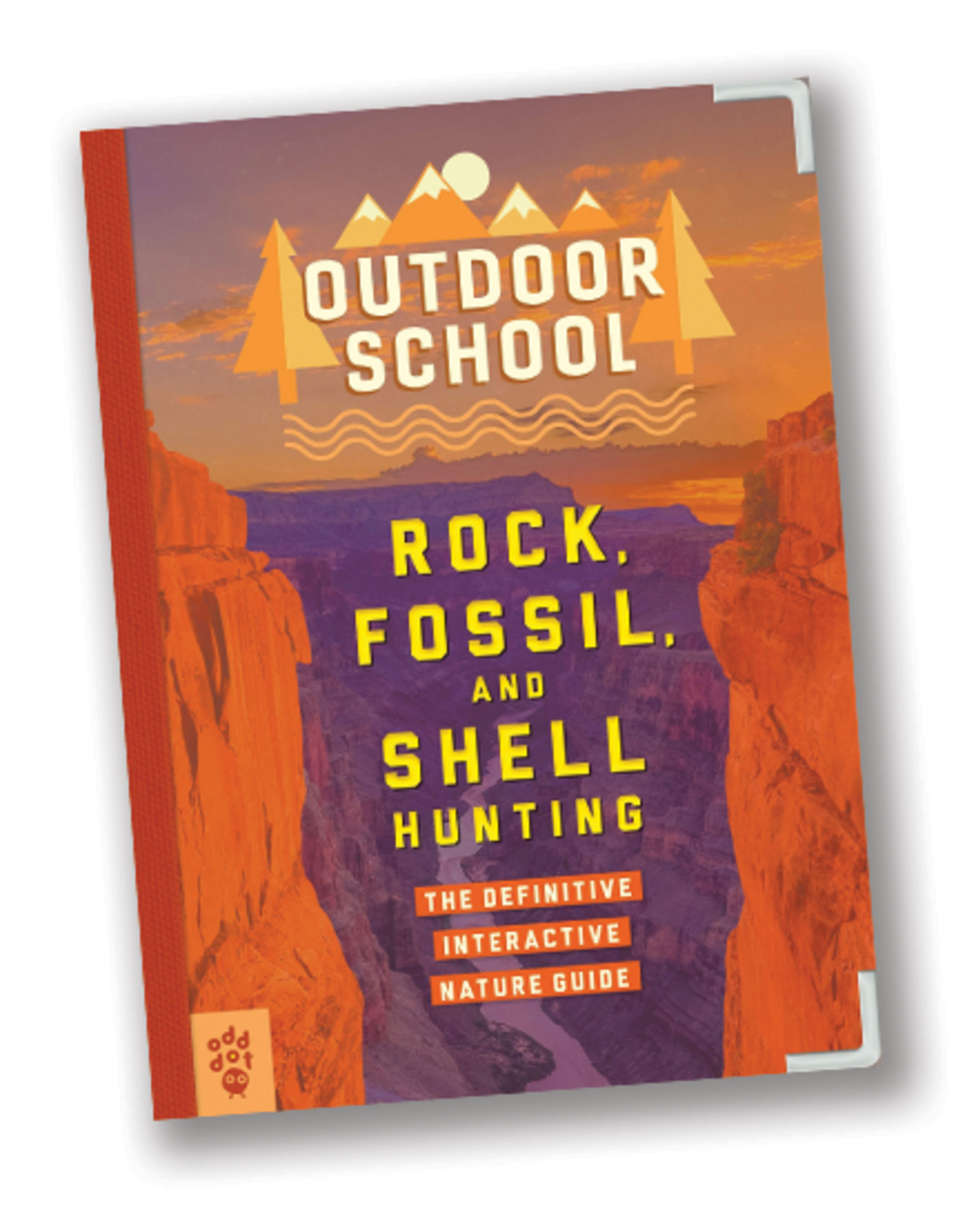 Outdoor School:  Rock, Fossil, and Shell Hunting
