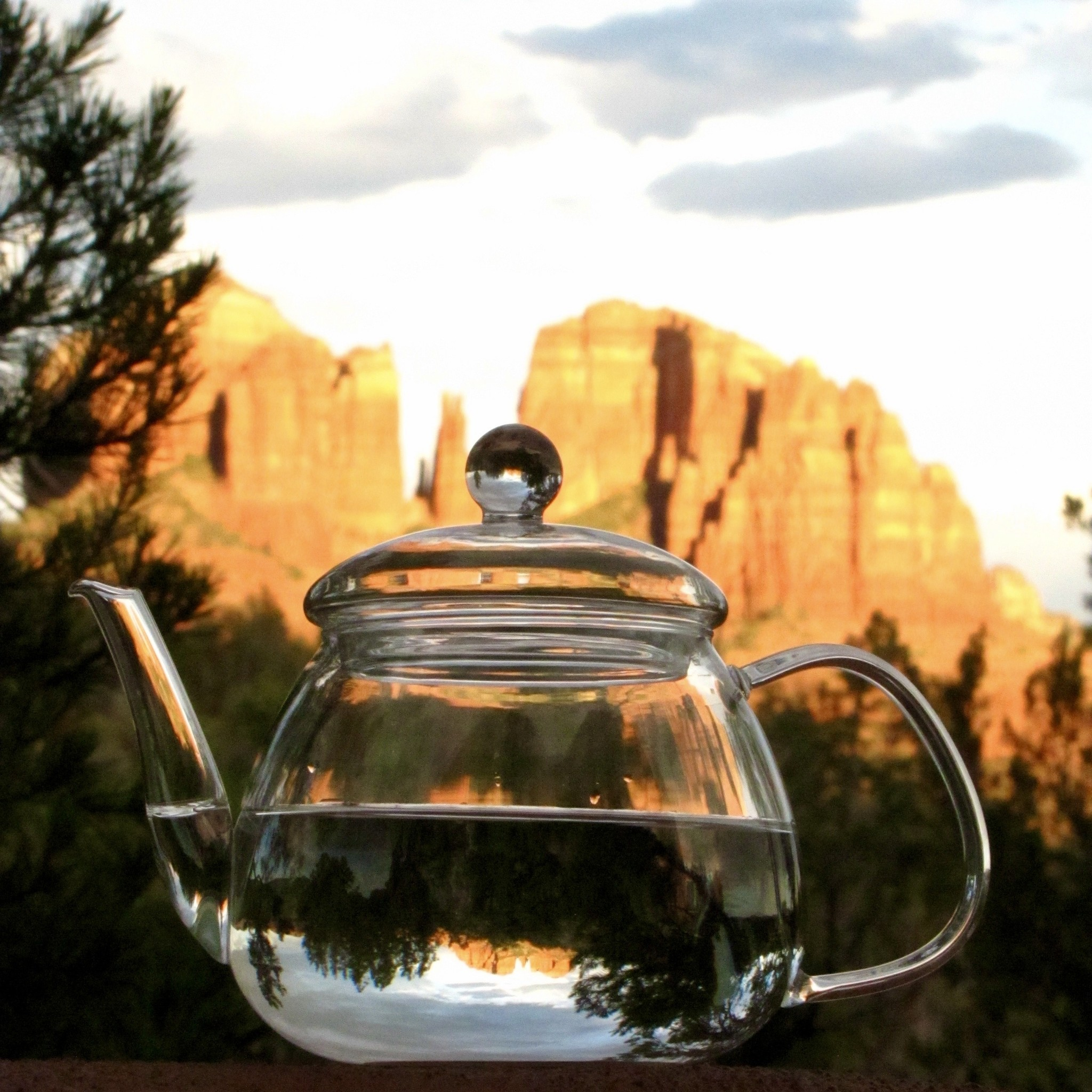 Tips To Better Understand Tea - Hint: It's A Lot Like Knowing Wine