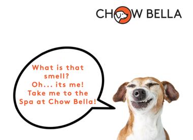 The Spa at Chow Bella