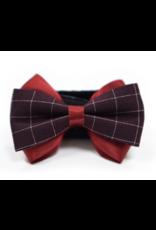 Dogo Easy Bow - Gentleman