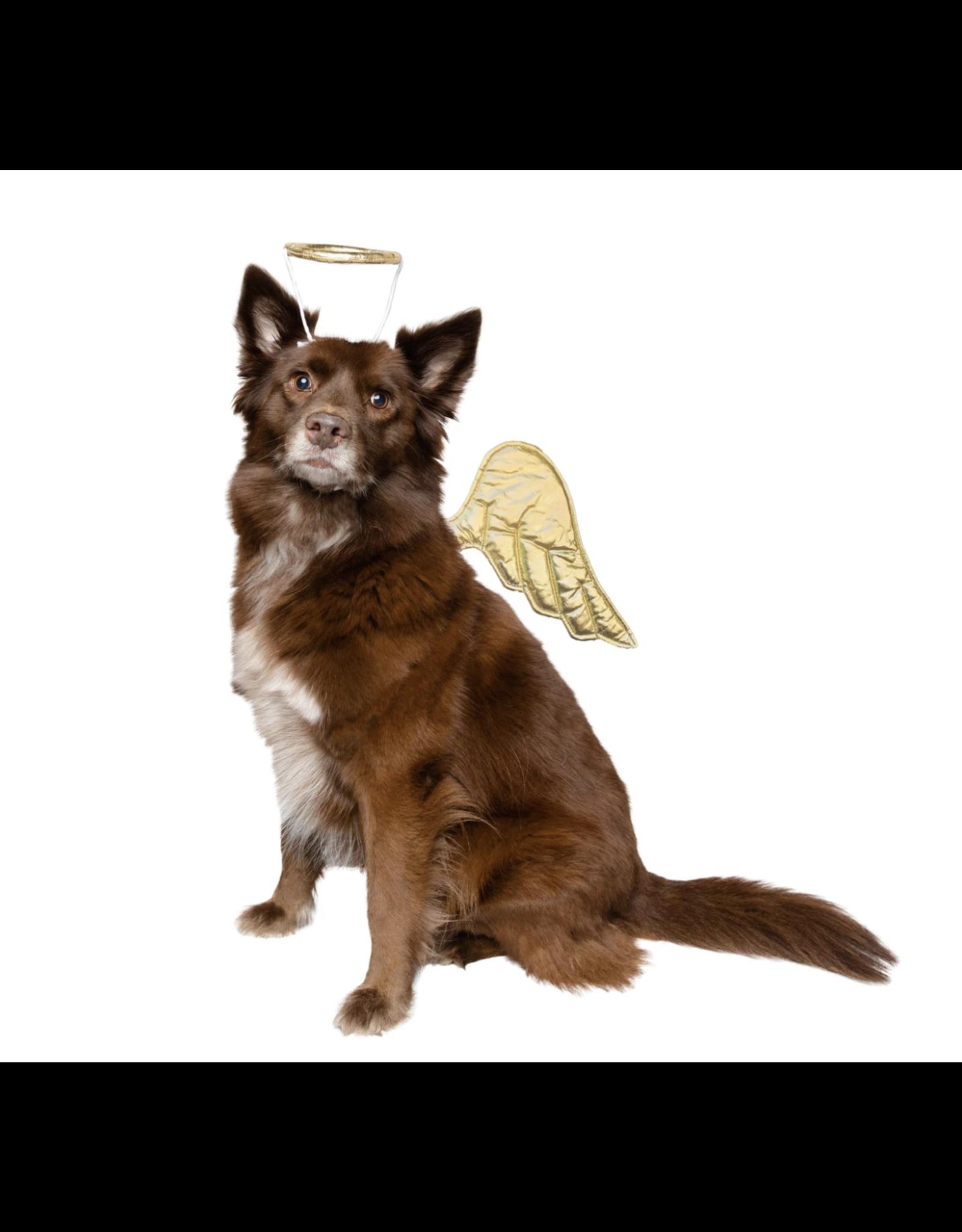 Pet Krewe Angel Costumer