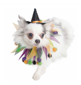 Pet Krewe Halloween Hat and Collar Set