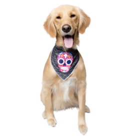 Pet Krewe Glow in the Dark Skull Bandana