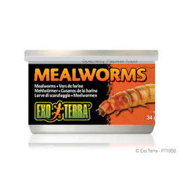 Exo Terra Exo Terra - Mealworms Canned Food 34g