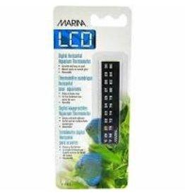 Marina Marina Dolphin - Digital Horizontal Thermometer LCD