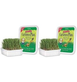 Miracle Care Miracle Care - A'bout Cat Grass Plus 150g