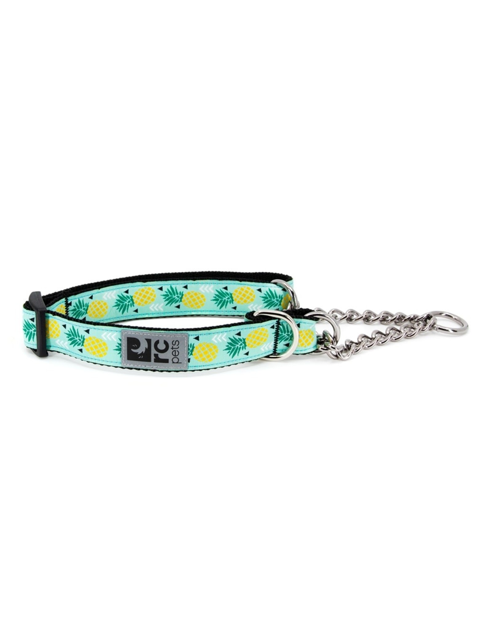 RC Pets RC Pets - Training  Collar Small