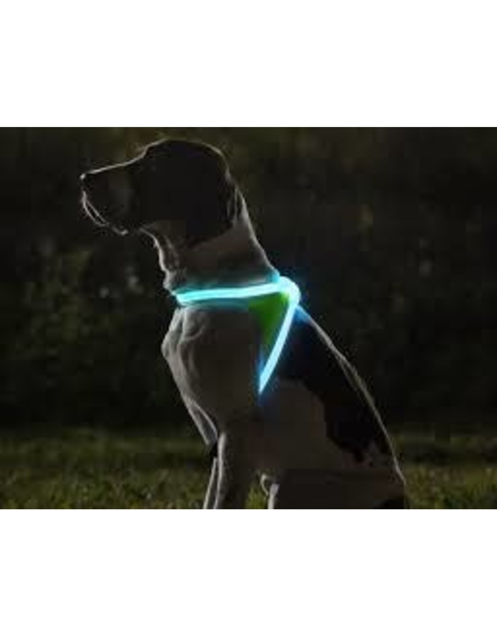 Noxgear Noxgear - Lighthound Illuminated Harness