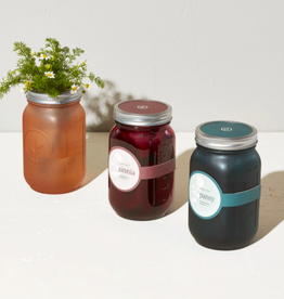 Modern Sprout Herb Jars