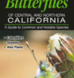 Butterflies of Central and Northern California