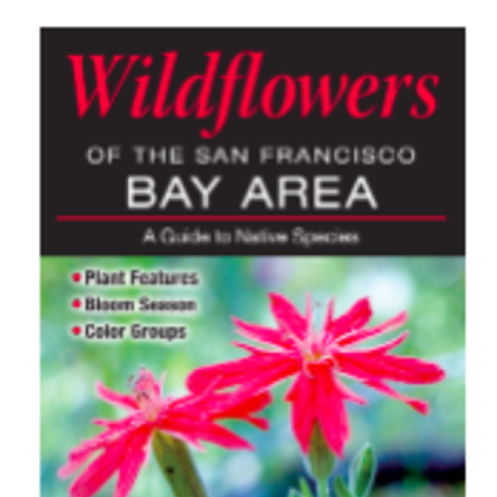 Wildflowers of the SF Bay Area