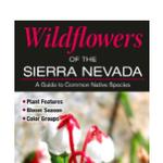 Wildflowers of the Sierra Nevada