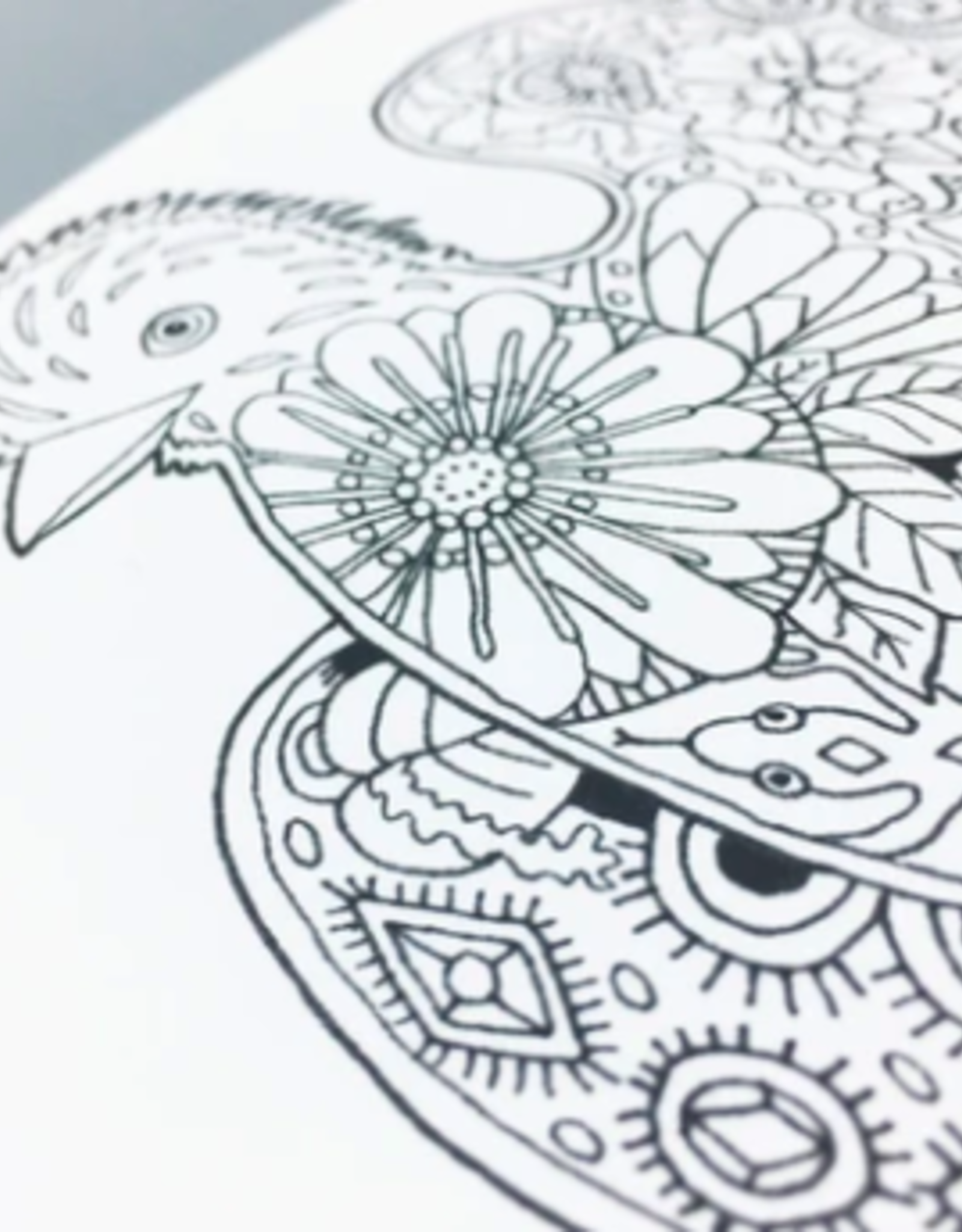 Critters Coloring Book