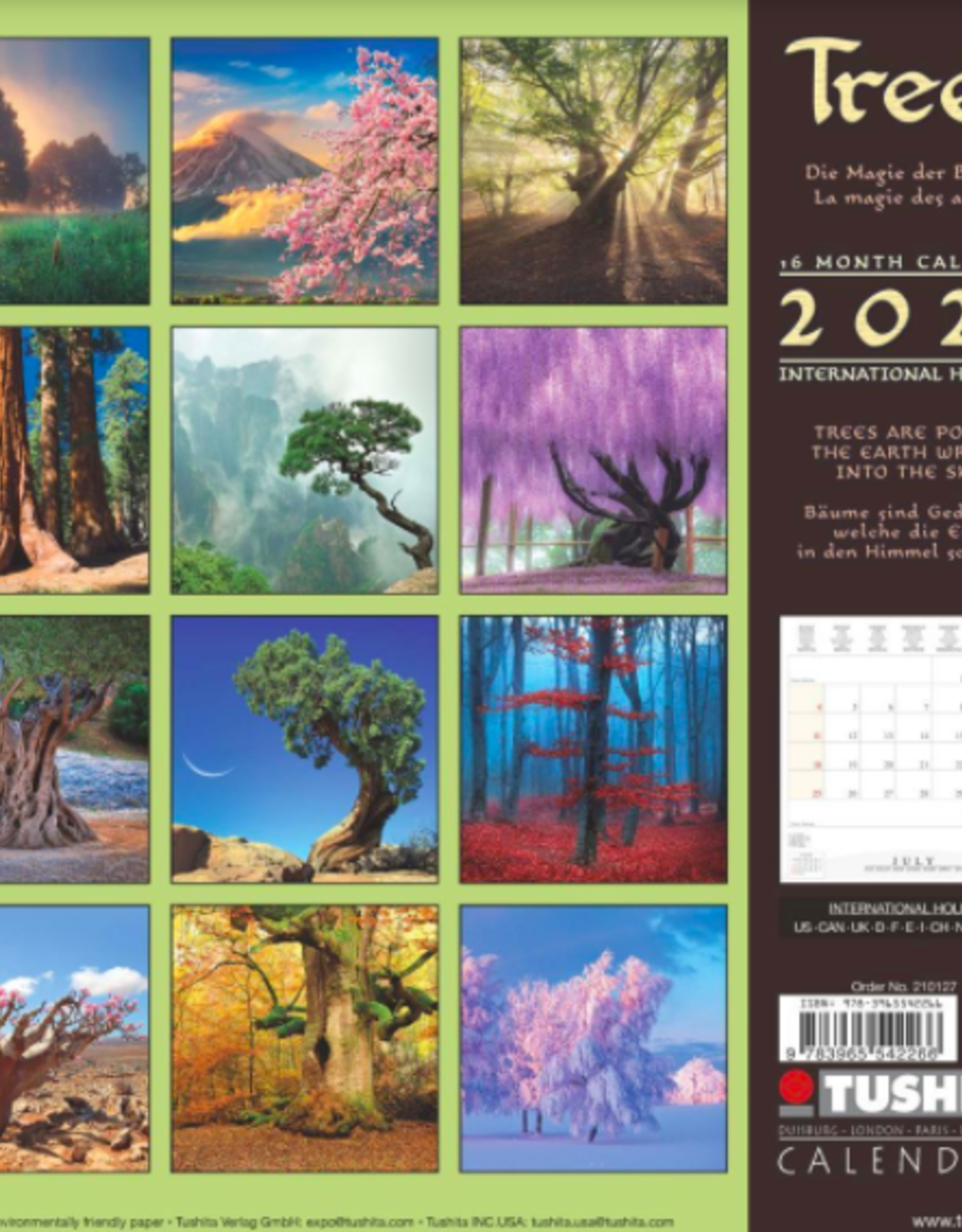 Trees 2021 Wall Calendar