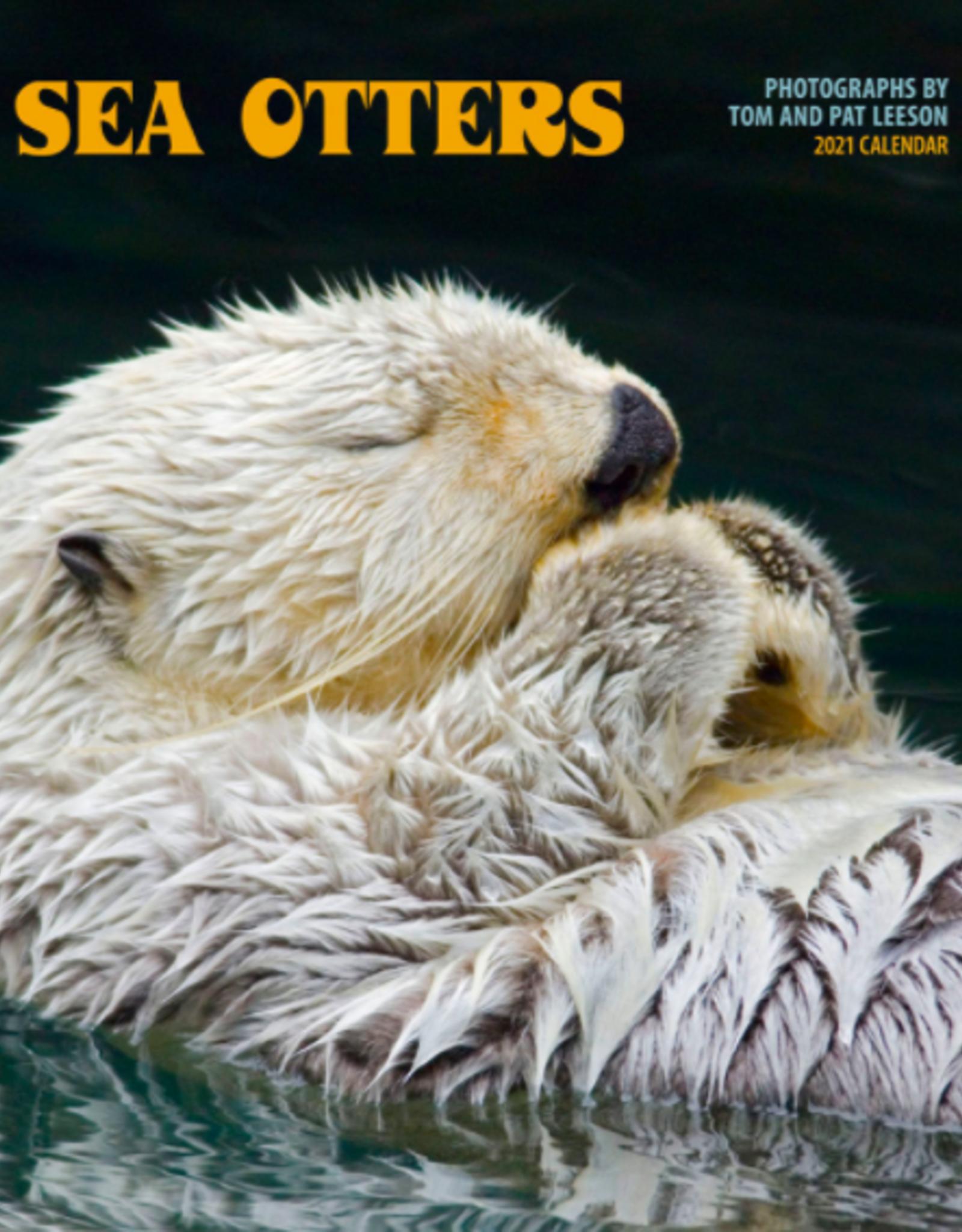 Sea Otters Wall 2021 Wall Calendar